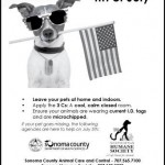 Keep Your Pets Safe on the 4th