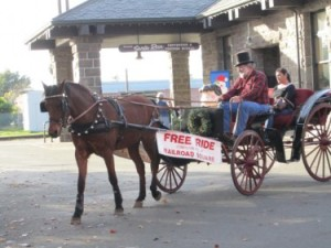 RRSQ Carriage Rides